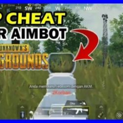Cara Cheat PUBG Mobile 2019 Wallhack Skil